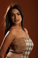 Aditi Agarwal Hot Photo Gallery 1